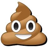 Poop_Emoji_Chunky_Magnet_LG.jpg